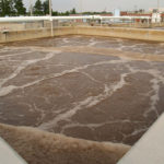 activated sludge wastewater management